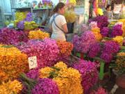 цветочный рынок Бангкока