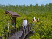 Лесной парк Пранбури в 20-ти км. от Хуа Хина