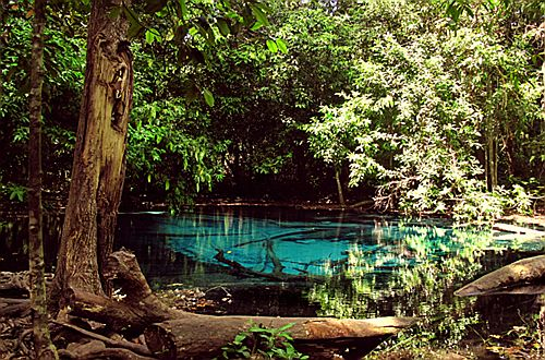 Blue Pool, Khao Pra Bang Khram Nature Reserve