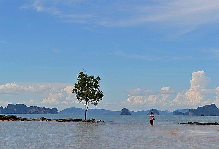 Мангры и остров Хонг